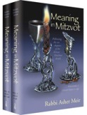 web-meaning in mitzvot