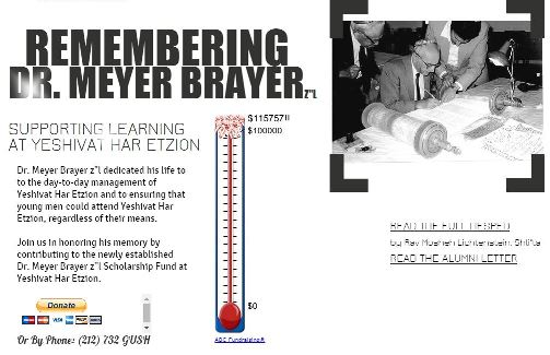 Remembering Dr. Brayer success web